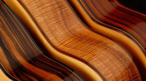gitarrenschule_delmenhorst_gitarrenunterricht_tonholz_zarge